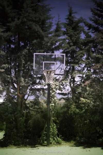 Τα ομαδικά αθλήματα όπως είναι το μπάσκετ βοηθούν στη συνεργασία και την σωματική άσκηση, στοιχεία σημαντικά για την απελευθέρωση και αποτοξίνωση από τον κάθε είδους εθισμό.