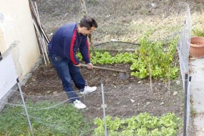 Η κηπουρική ενασχόληση έχει κοινά σημεία με την διαδικασία της απεξάρτησης:  Όπως καλλιεργείται το χώμα για να θρέψουμε τους καρπούς, έτσι καλλιεργείται και το μυαλό μας με κοινή προσπάθεια, για να το καθαρίσουμε από τις κακές σκέψεις των πειρασμών.