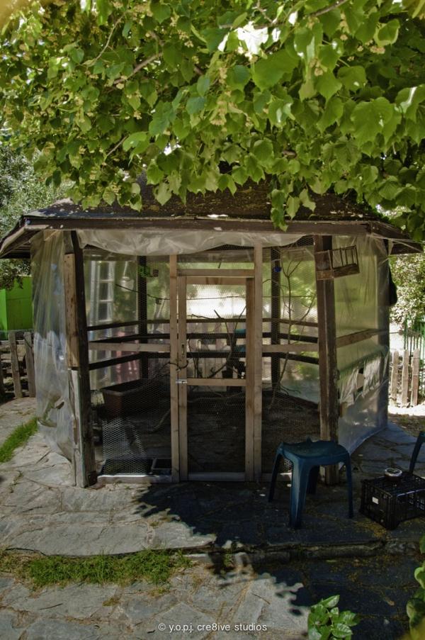 Φωτογραφία από το κιόσκι του κέντρου απεξάρτησης kentro apexartisis.com